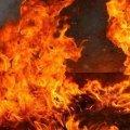 З пожежі рятувальники винесли бездиханне тіло 79-річної жительки Житомирської області