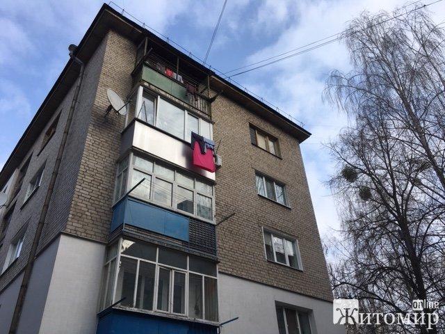 Наркоман на вулиці Короленка у Житомирі відірвав голову котові. ФОТО