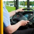 Житомирянам пропонують скаржитись на короткий номер на водіїв