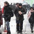 Сніг повернеться в Україну: синоптики розповіли, коли прийде справжня зима