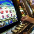 У Новоград-Волинському розслідується незаконне зайняття гральним бізнесом