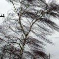 Житомирські синоптики попереджають про погіршення погоди