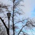 На вихідних погода у Житомирі не зміниться