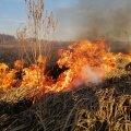 Через сильний вітер житомирські рятувальники гасили займання сухої трави. ФОТО