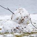 Засуха в Украине: метеоролог предупредила о беде из-за бесснежья