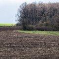 Украинцев могут оставить без земельных участков
