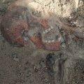 На Житомирщині пошуківці знайшли рештки солдата, який загинув у липні 1941-го року