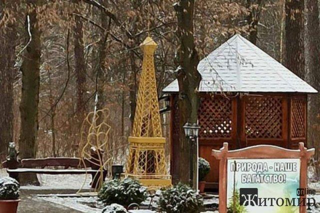 У лісосмузі поблизу Житомира з'явилася невелика копія Ейфелевої вежі. ФОТО