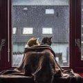 Погода в Житомирі на робочий тиждень