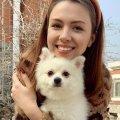 Зеленский пообещал помочь украинке, которая осталась в Китае из-за любимой собаки
