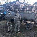 Житомирські прикордонники виявили транспорт, який перевозив деревину із зони відчуження
