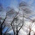 В Україні очікується штормовий вітер до 40 м/с