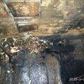 У селі Житомирської області горів будинок: рятувальники винесли з приміщення непритомного господаря. ФОТО