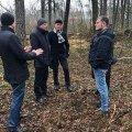 Іноземна компанія стане на зачистку лісових ділянок у Житомирській області