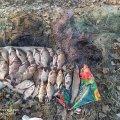 За тиждень у Житомирській області патруль зловив порушників, які завдали збитків рибним запасам на понад 18 тис. грн