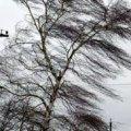 На вихідних у Житомирській області очікуються сильні пориви вітру і до 7 градусів морозу