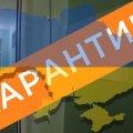 Большая ответственность: украинцам рассказали, как правильно сидеть на карантине