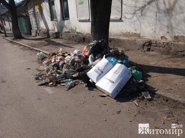 У Житомирі під деревами валяються гори сміття. ФОТО
