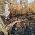 Селяни, які намагалися загасити суху траву поблизу Житомира, натрапили на обгоріле тіло чоловіка