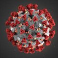 В Україні зареєстровано 418 випадків захворюваності на коронавірус
