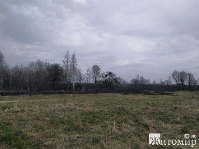 За добу рятувальники отримали 85 повідомлень про пожежі на території Житомирщини. ФОТО