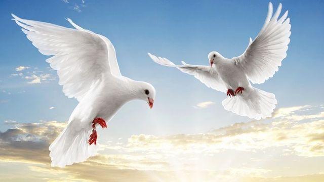 Благовіщення Пресвятої Богородиці: головні традиції і заборони цього дня та як відсвяткувати на кара ...