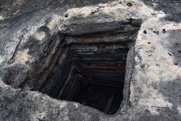 Страшне лихо на Житомирщині: вогонь на очах зжирав життя та природу