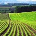 Верховна Рада прийняла закон про ринок землі. Що зміниться