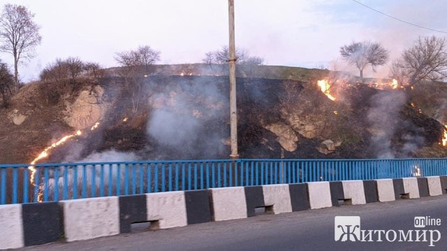 У Чуднові, поруч з мостом, горить суха трава. ФОТО