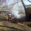 Селяни з рятувальниками гасили пожежу в Житомирській області: згоріли три пустуючі та одна господарча будівлі. ФОТО