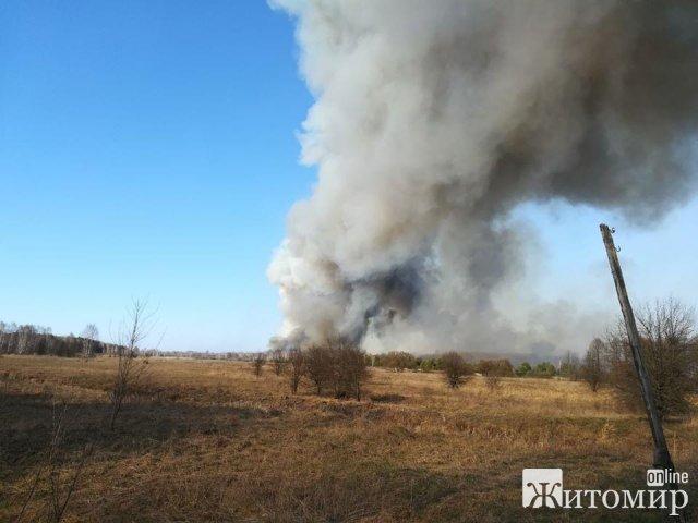 Великі лісові пожежі на Житомирщині. ФОТО