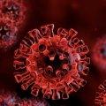 На Житомирщині +20 хворих на коронавірус за добу, серед них 2-річний хлопчик