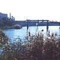 Річка Тетерів критично обміліла