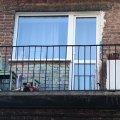У райцентрі Житомирської області чоловік випав з балкона 4 поверху та отримав смертельні травми