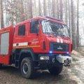 На Житомирщині лісова пожежа наближається до села, ледь не згорів КПП на кордоні: фото
