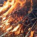 Для гасіння пожеж на Житомирщині задіють важку військову техніку