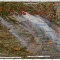 Космічне агентство показало фото з супутника пожеж на Житомирщині