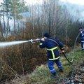 На Житомирщине пожар уничтожил 39 домов. ВИДЕО