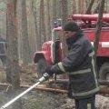 На Житомирщині залишається один нелокалізований осередок масштабної пожежі