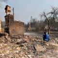 Житомирські волонтери збирають допомогу для потерпілих від пожеж з Овруцького району