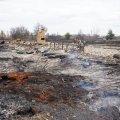 Версія причини пожеж на Житомирщині: пошкодження електродротів
