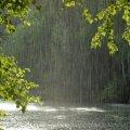 Перший тиждень травня на Житомирщині буде з дощами і грозами