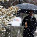 У Житомирі пройшов довгожданний весняний дощ