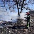 За добу на Житомирщині сталися три пожежі, на одній загинула жінка