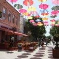 У Житомирі з 11 травня дозволили сезонну торгівлю та літні майданчики закладів харчування