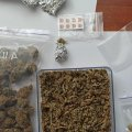 Прикрили лавочку: на Житомирщині більше не можна купити наркотики он-лайн