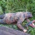 Бойня под Житомиром. Перед убийством жертвы угрожали изнасиловать арендатора ставка - журналист