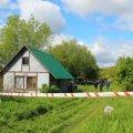 Розстріл у Житомирській області: поліція повідомила нові деталі