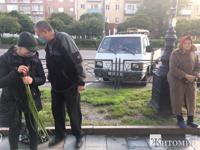 """У Житомирі вже продають """"татарське зілля"""" на Зелені свята. ФОТО"""