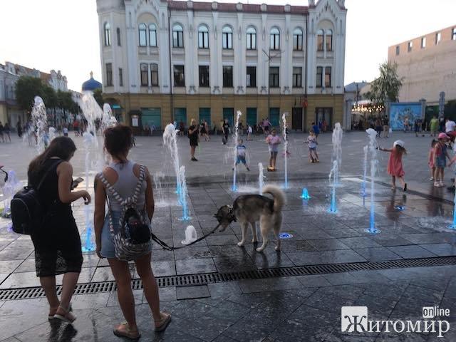 Вечірній фонтан на Михайлівській. Житомиряни, діти та великий пес. ФОТО